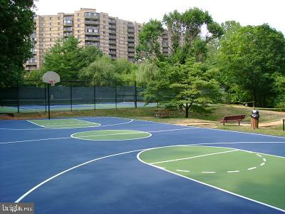 Basketball courts - 8370 GREENSBORO DR #118, MCLEAN