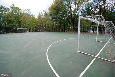 Don't forget the world's most popular sport! - 8370 GREENSBORO DR #118, MCLEAN
