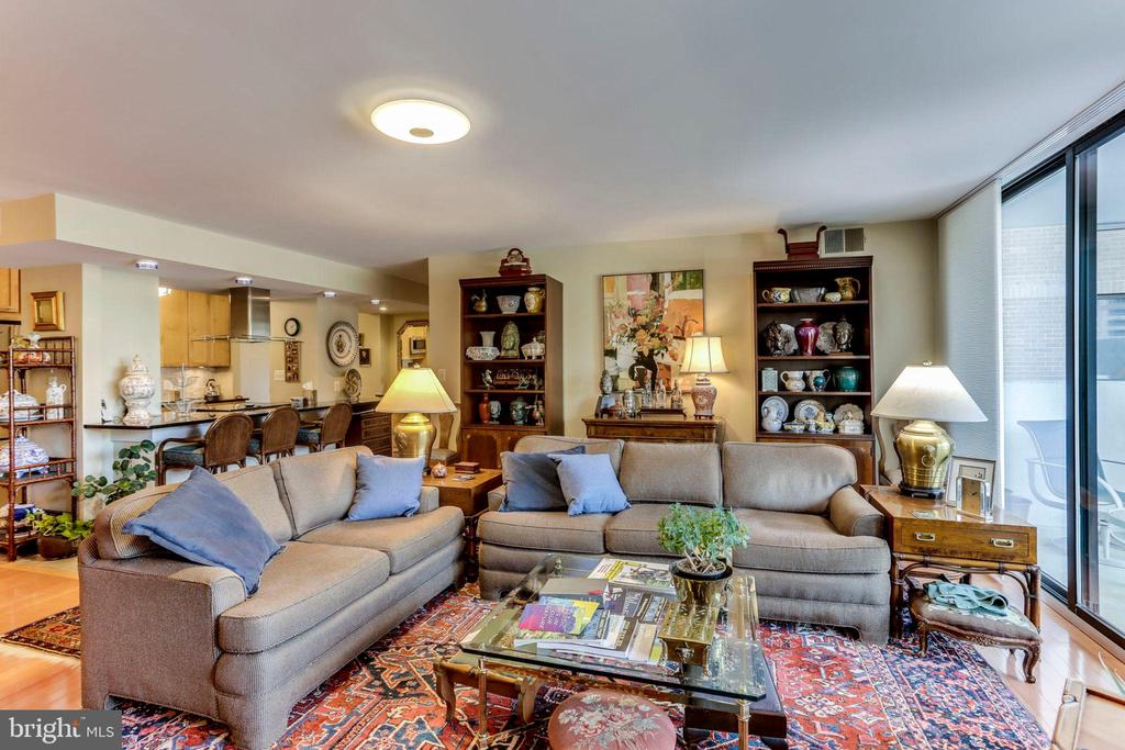 Living Room - Unusually Large Dimensions - 3800 FAIRFAX DR #111, ARLINGTON