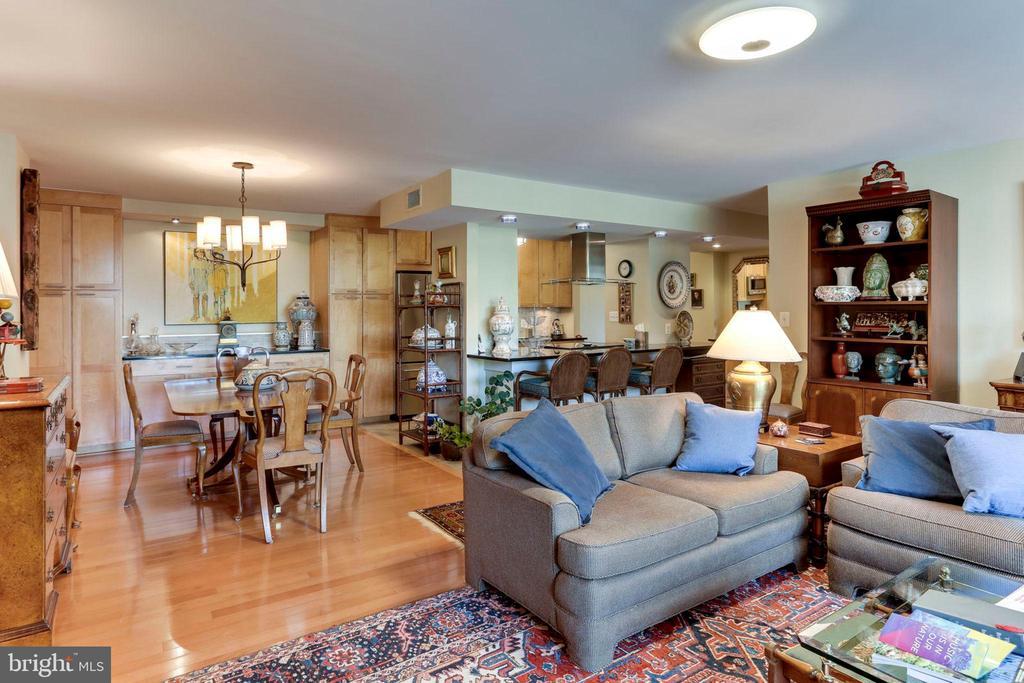 Living Room - Dining Room - Kitchen - 3800 FAIRFAX DR #111, ARLINGTON