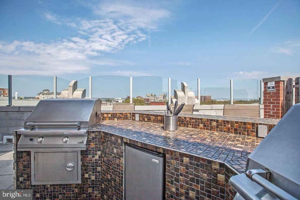 Roof Top BBQ Area for Entertaining - 1021 N GARFIELD ST #118, ARLINGTON