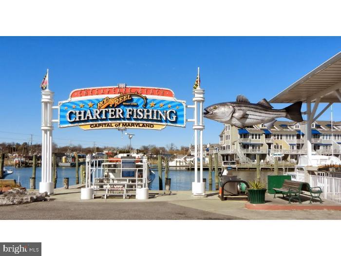 Chesapeake Beach Charter Fishing - 3216 INA CHASE, CHESAPEAKE BEACH