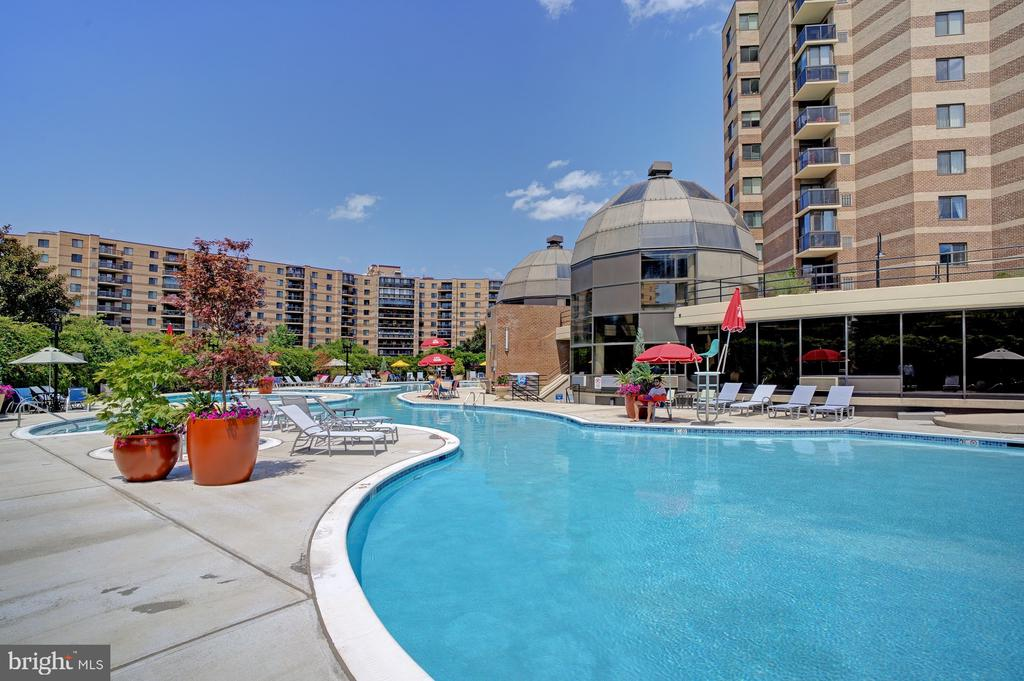 Huge lotus shaped pool and spa recently renovated - 8370 GREENSBORO DR #118, MCLEAN