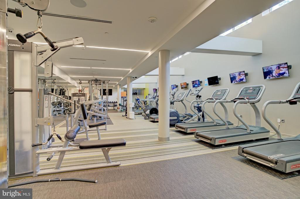 Newly renovated gym just steps from your home - 8370 GREENSBORO DR #118, MCLEAN