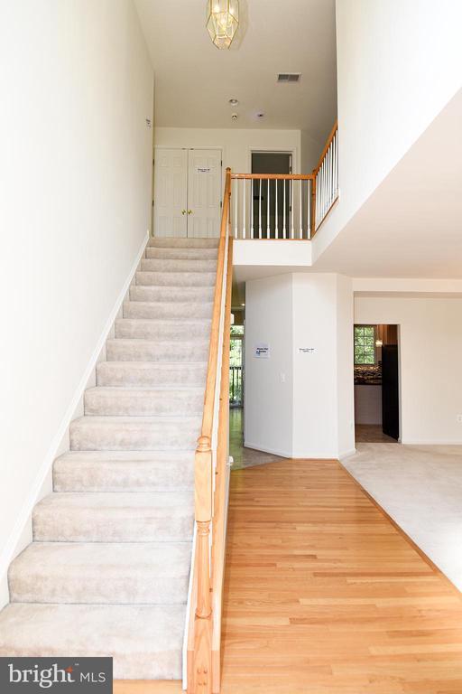 Hall Foyer- Hardwood Flooring - 15004 LUTZ CT, WOODBRIDGE