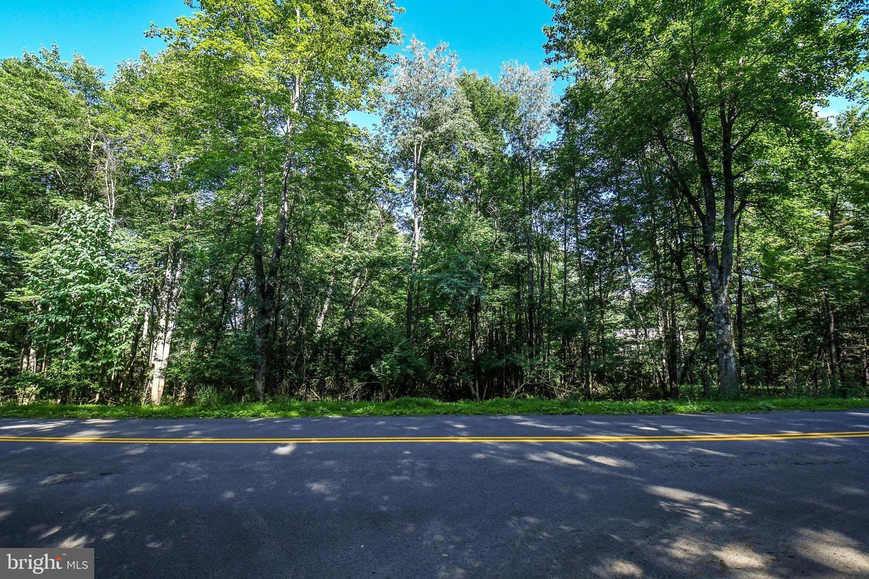 土地,用地 为 销售 在 Swanton, 马里兰州 21561 美国