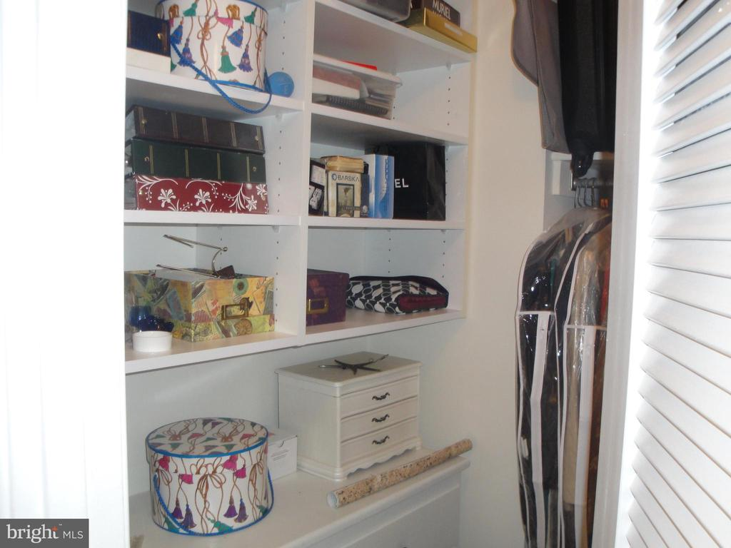 MBR Has 2 closets-  organizers w/louvered door - 8380 GREENSBORO DR #721, MCLEAN