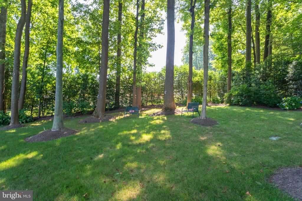 Private and Secluded backyard - 7787 GLENHAVEN CT, MCLEAN