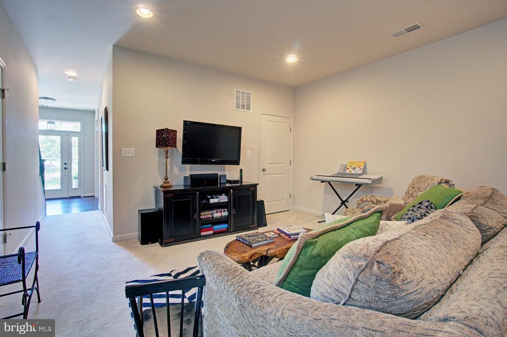 Spacious Lower Level Recreation Room - 42245 BLISS TER, BRAMBLETON