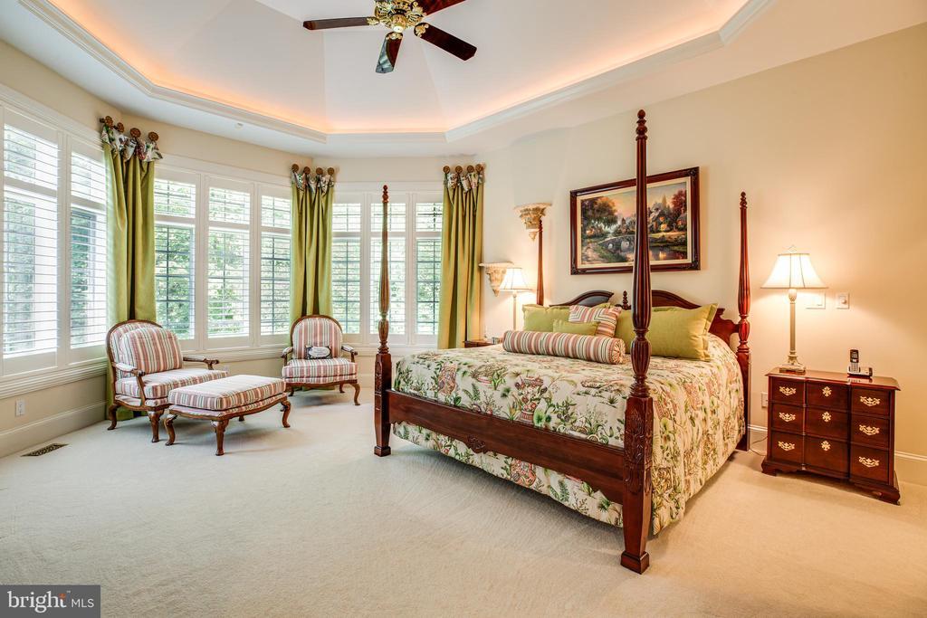 MASTER BEDROOM on the main level - 11510 BALDY EWELL WAY, SPOTSYLVANIA