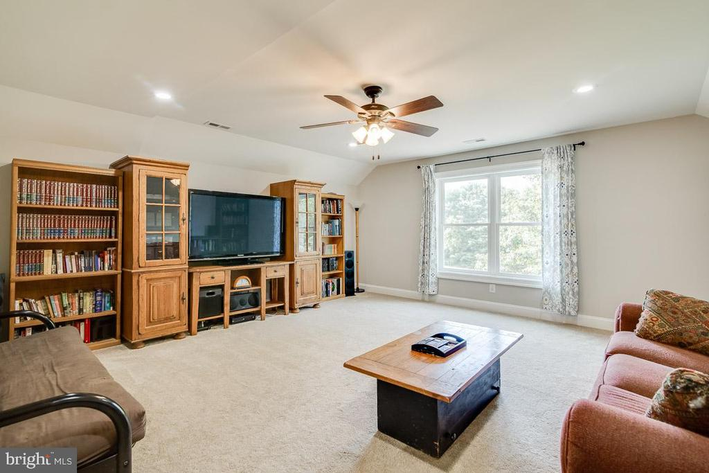 5th Bedroom, Play/ Family Room, or Theater Room - 838 HARTWOOD RD, FREDERICKSBURG