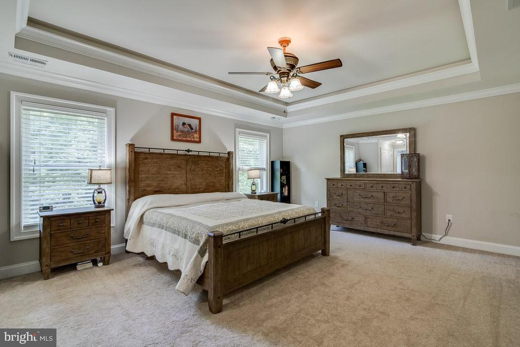 Owner's Suite with Trey Ceiling - 838 HARTWOOD RD, FREDERICKSBURG