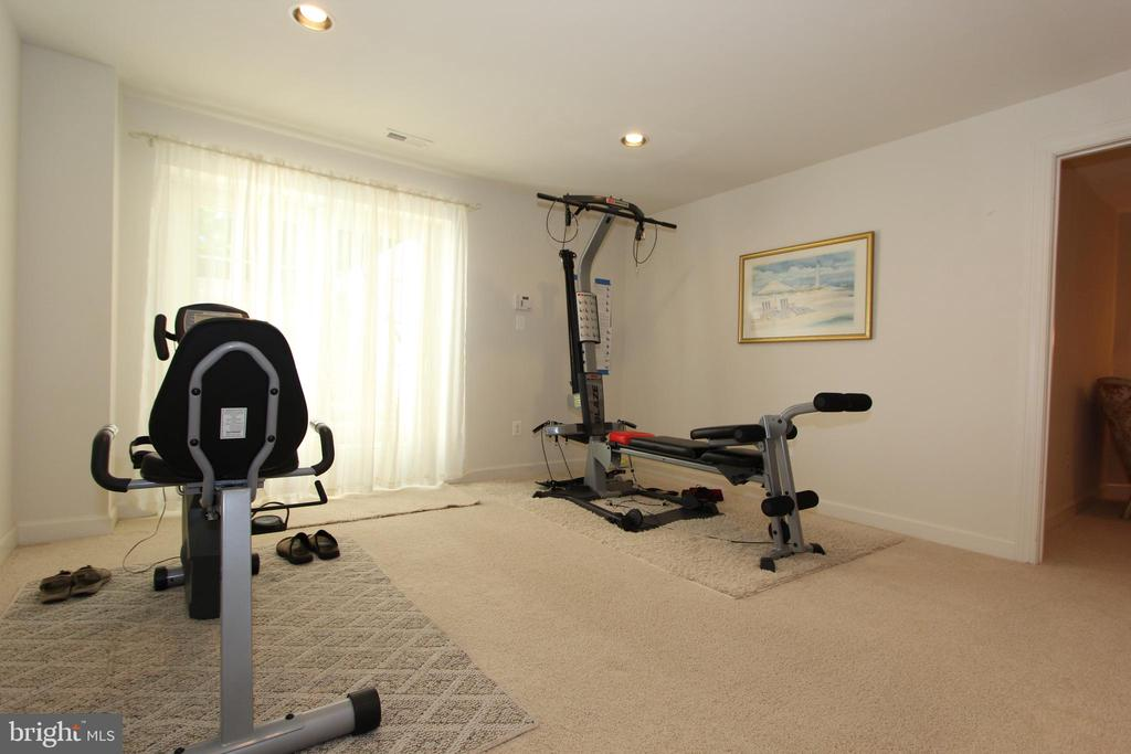Walkup lower level exercise room - 4303 SARATOGA SPRINGS CT, MIDDLETOWN