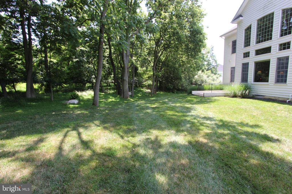 Wooded backyard - 4303 SARATOGA SPRINGS CT, MIDDLETOWN