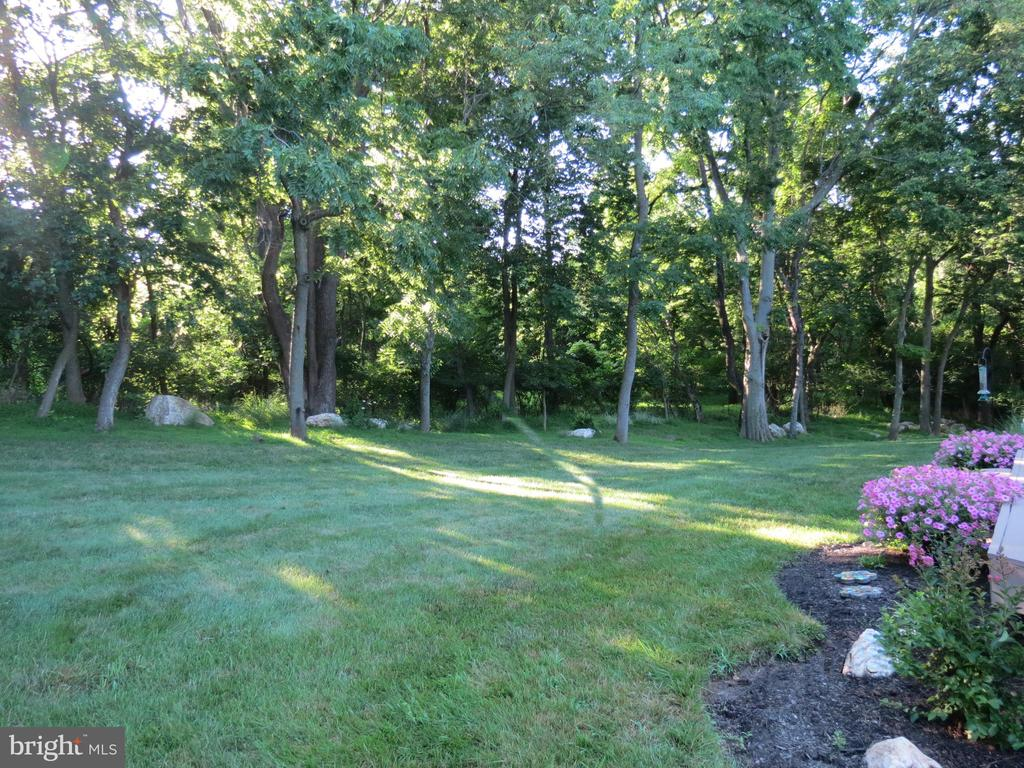 Backyard view - 4303 SARATOGA SPRINGS CT, MIDDLETOWN