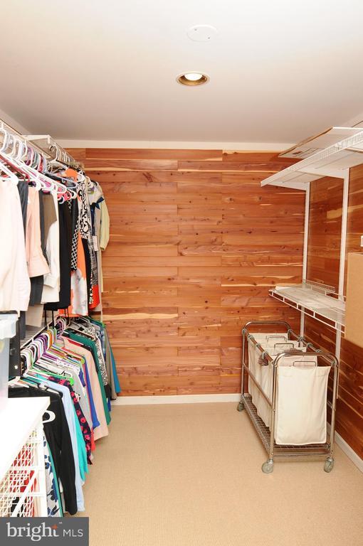 Master closet with cedar - 46432 MONTGOMERY PL, STERLING