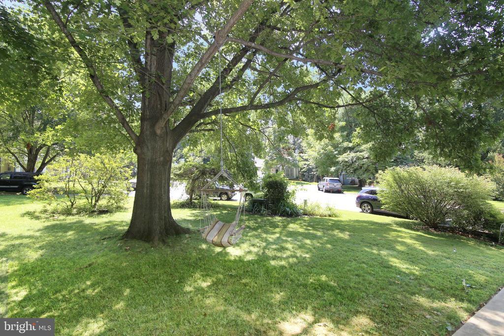 Front Side Yard - 15046 SILVER LEAF CT, DUMFRIES