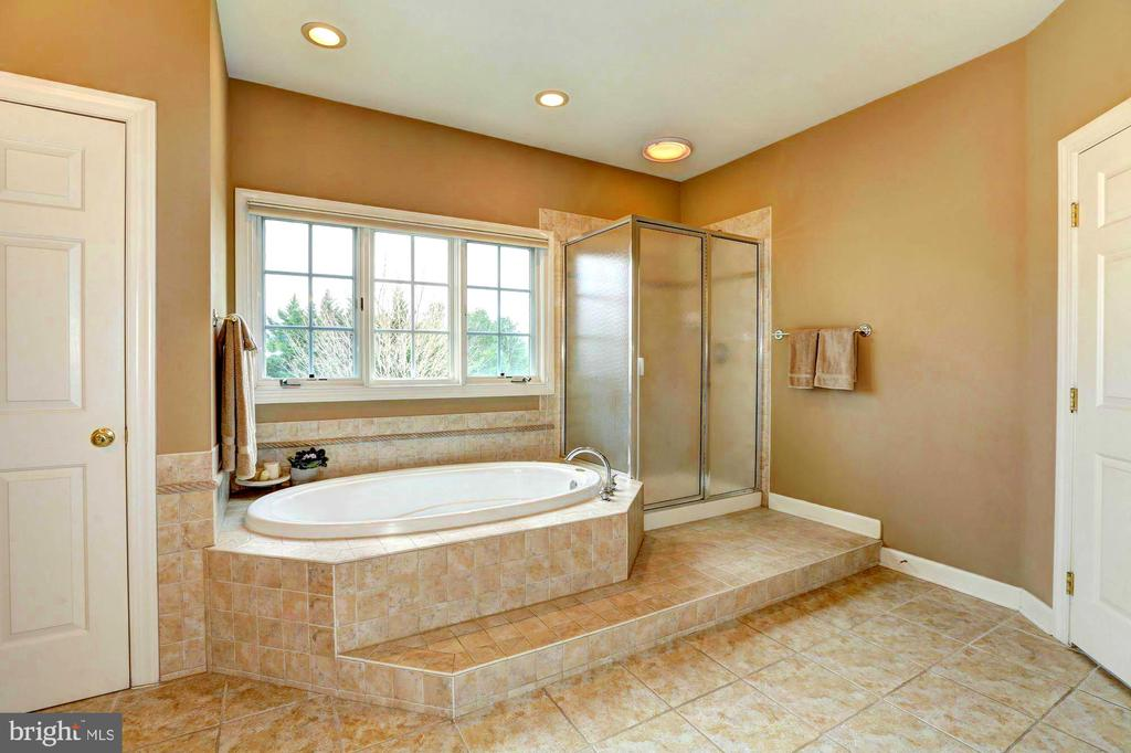 Spa like  tub and shower - 22910 PEACH TREE RD, CLARKSBURG