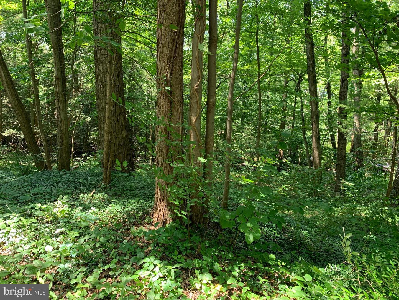 أراضي للـ Sale في Mount Gretna, Pennsylvania 17064 United States