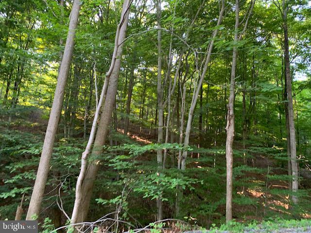 Οικόπεδο για την Πώληση στο 1009 B SIX MILE RUN Road Six Mile Run, Πενσιλβανια 16679 Ηνωμένες Πολιτείες