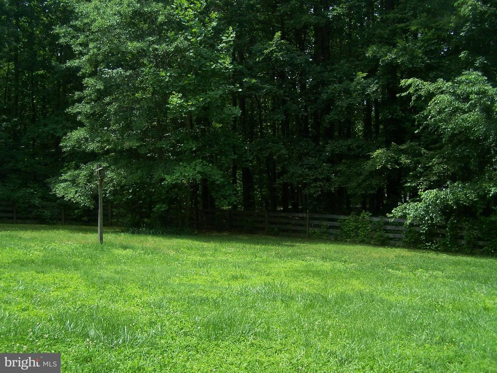Lots of cleared space amidst 6 acres!! - 3548 WINDING RD, PARTLOW