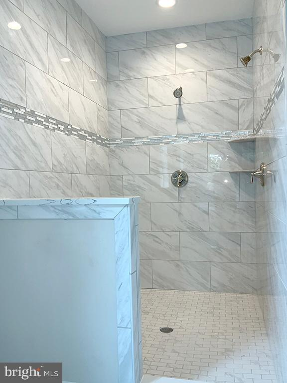Large Walk-In Shower with Dual Shower Heads - 6617 GREENLEAF ST, SPRINGFIELD