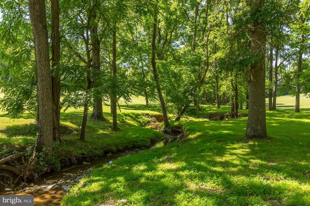 Meandering creek on property - 23009 COBB HOUSE RD, MIDDLEBURG