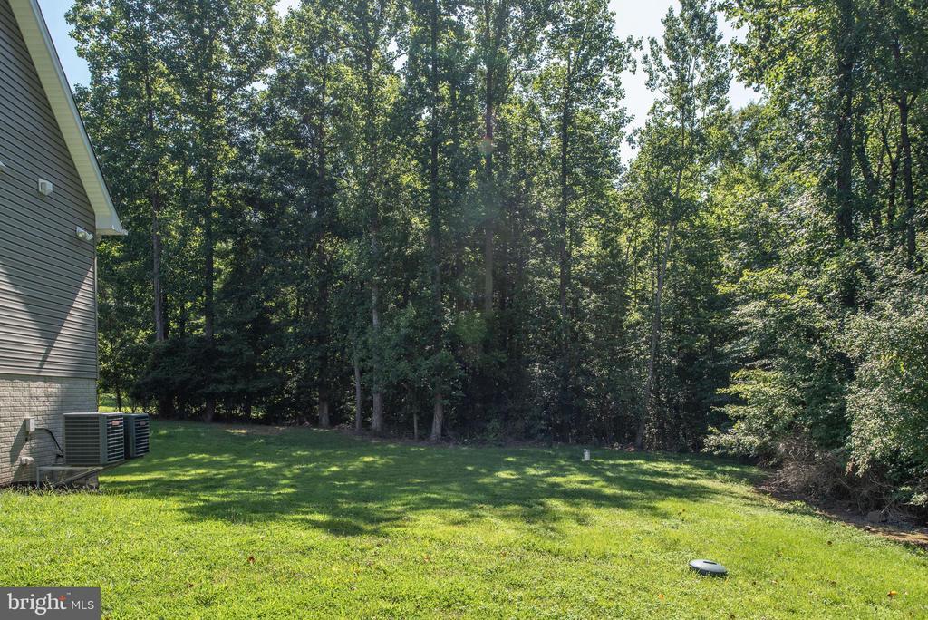 Tree line in backyard - 2843 GARRISONVILLE RD, STAFFORD