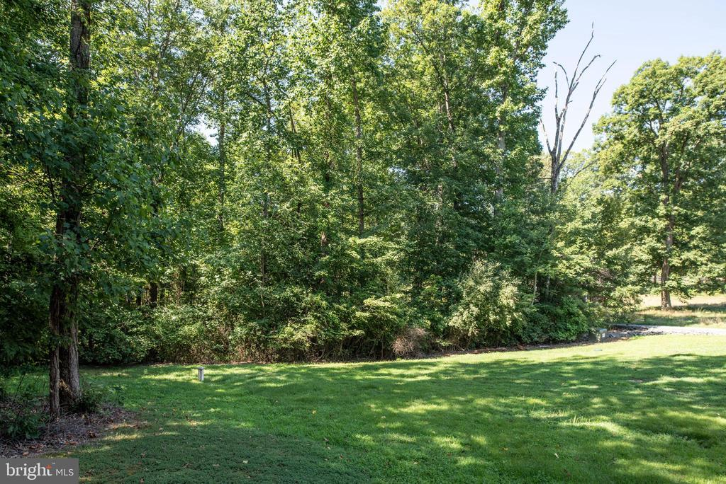 Tree line provides privacy - 2843 GARRISONVILLE RD, STAFFORD