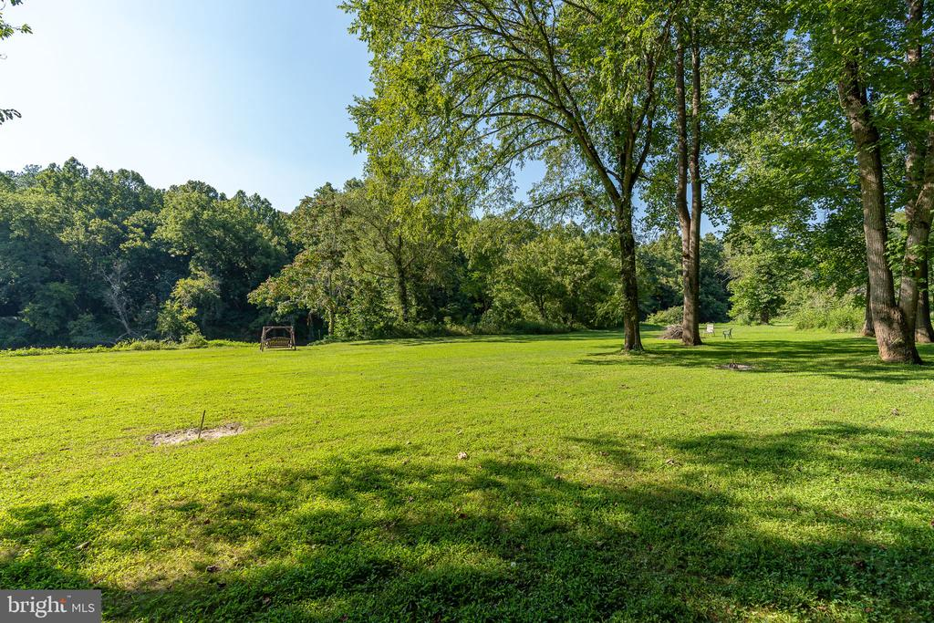 Use This Space to Play Fetch w/ Your Dog - 1205 SPOTSWOOD DR, LOCUST GROVE