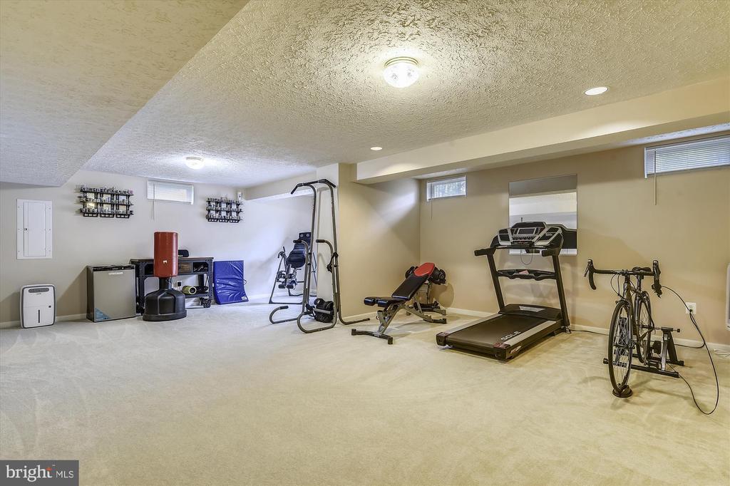 Lower Level Walk Out Rec Room - 9309 MICHAEL CT, MANASSAS PARK