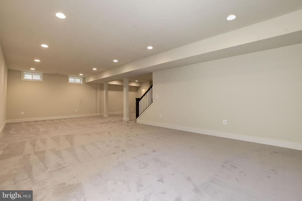 Basement Recreation Room - 10106 DICKENS AVE, BETHESDA