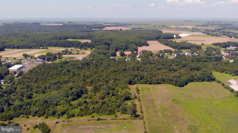 土地 のために 売買 アット Cedarville, ニュージャージー 08311 アメリカ