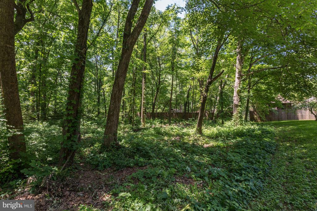 Beautiful Tree & Wooded View - 12335 COLERAINE CT, RESTON