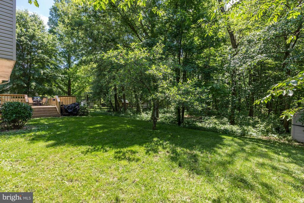 Spacious Back Yard - 12335 COLERAINE CT, RESTON