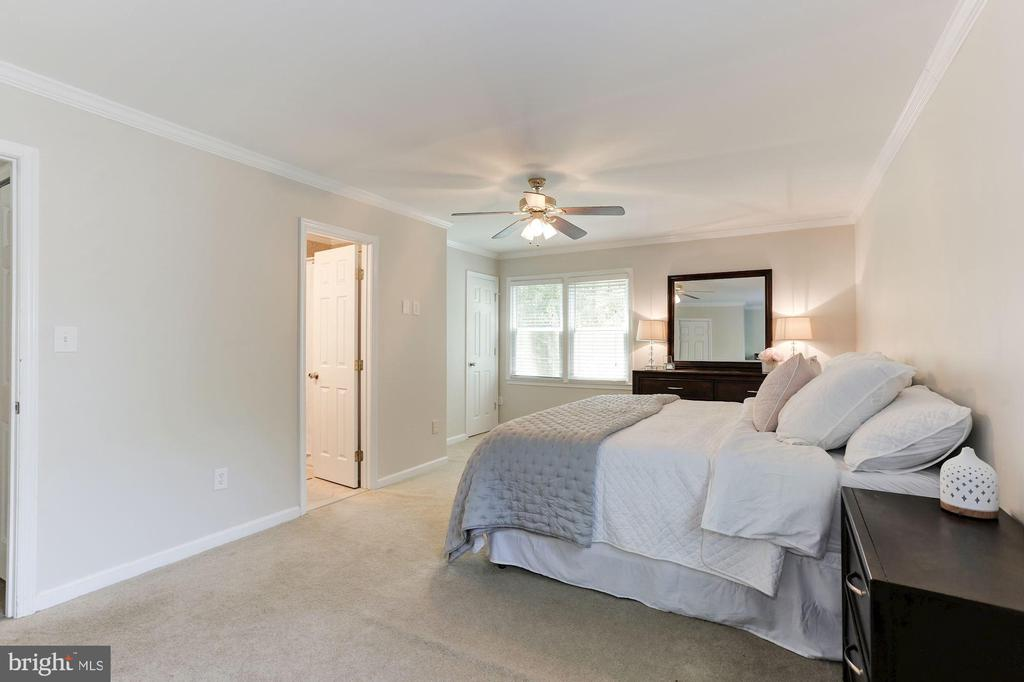 Master Bedroom Features TWO Large Closets! - 12335 COLERAINE CT, RESTON