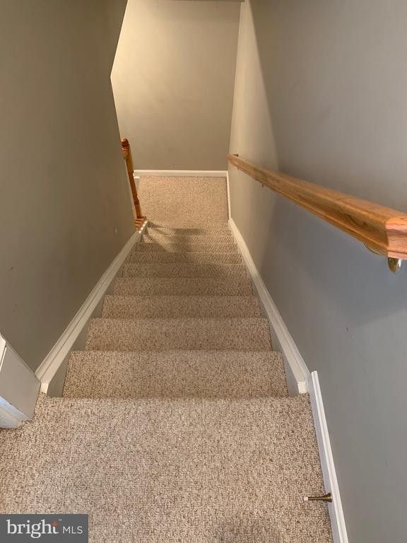 Stairway to Basement - 103 SANDPIPER TER, STAFFORD