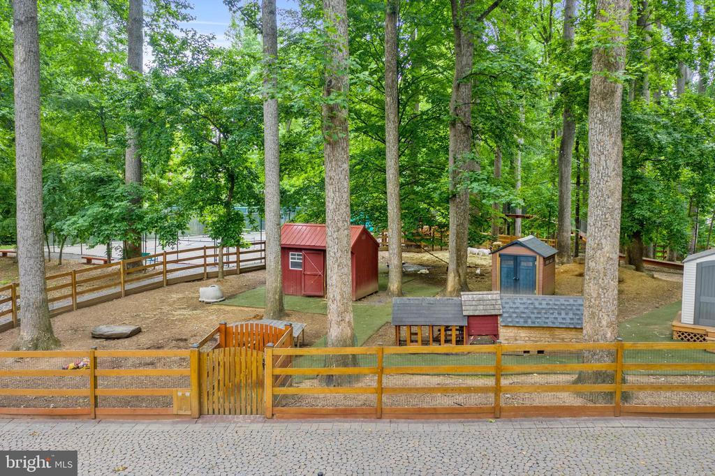 Petting Zoo - 12820 RIVER RD, POTOMAC