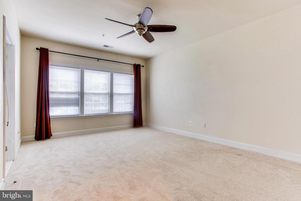 Master Bedroom - New Carpet - 525 ODENDHAL AVE, GAITHERSBURG