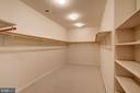 Master Walk In Closet - 9668 MAYMONT DR, VIENNA