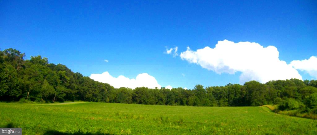 Over 16 Acres!  View of front field - 22910 PEACH TREE RD, CLARKSBURG