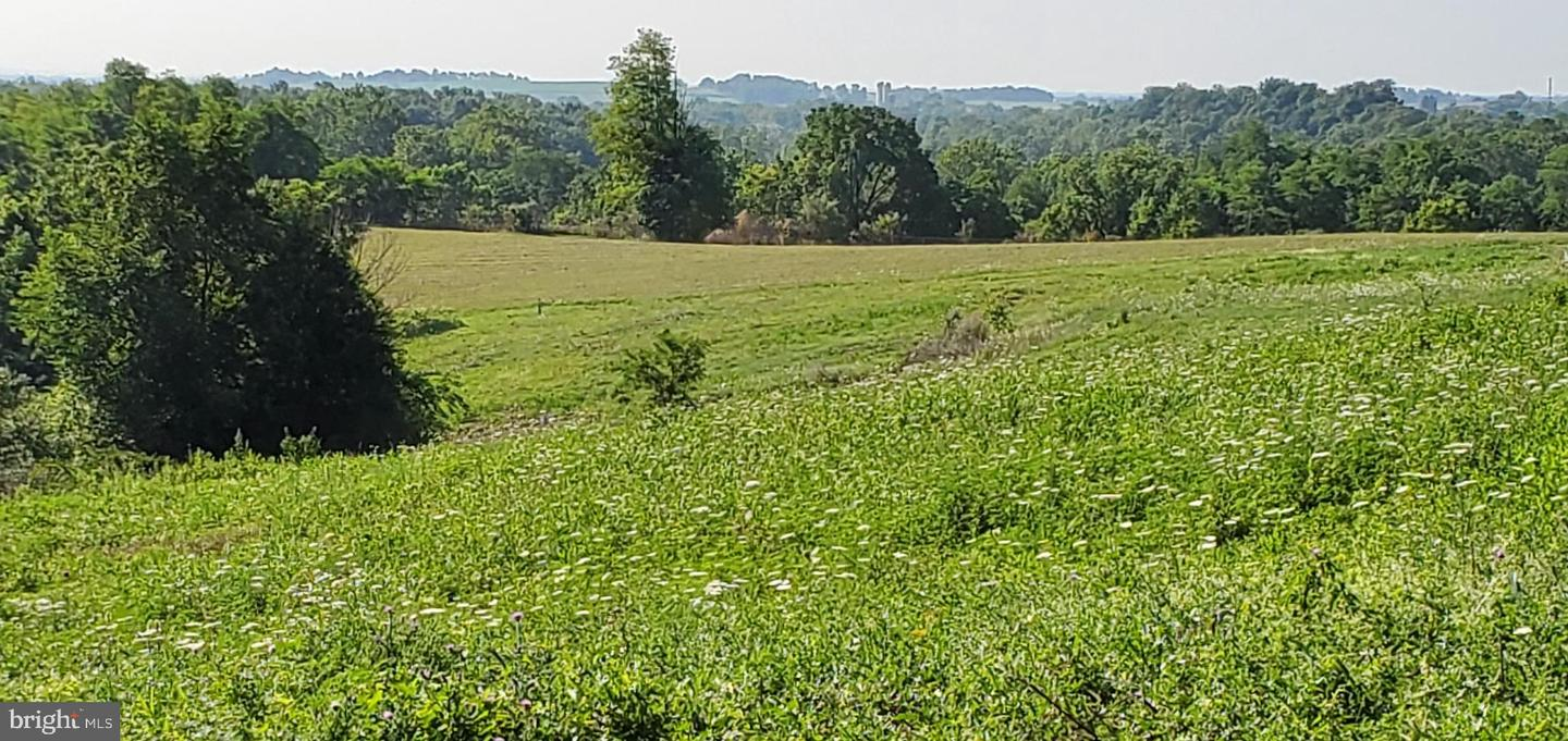 Land for Sale at Fort Loudon, Pennsylvania 17224 United States