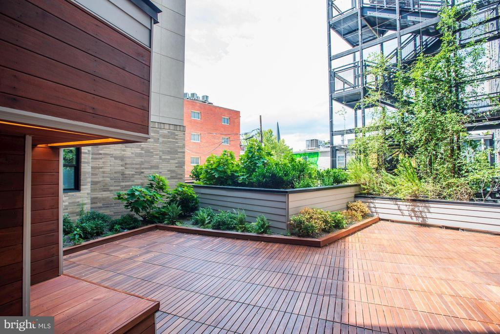 Architectural Steel Stairs Rise Up from Green Roof - 1550 11TH ST NW #303, WASHINGTON