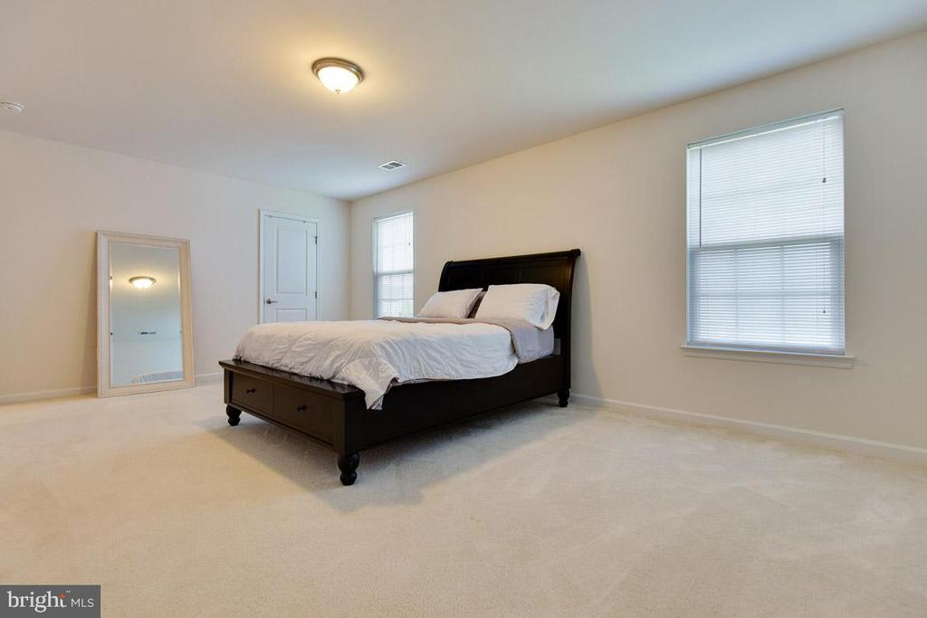 Large Master Suite - 20 EISENTOWN DR, LOVETTSVILLE