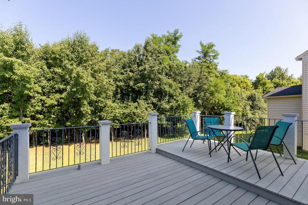 Composite Deck Overlooking Wooded Lot - 20 EISENTOWN DR, LOVETTSVILLE