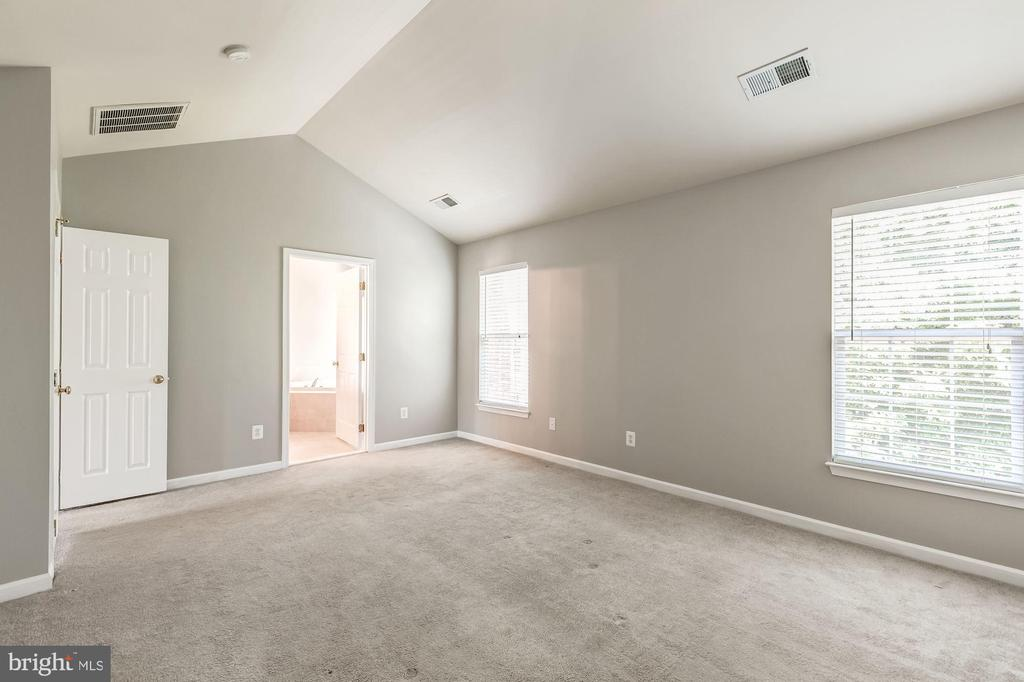 Master bed with vaulted ceilings - 43214 SOMERSET HILLS TER, ASHBURN