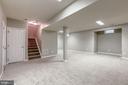 basement - 43214 SOMERSET HILLS TER, ASHBURN