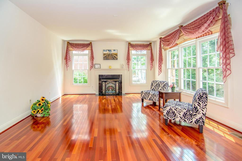 What a pleasure, south-west family room exposure - 2374 JAWED PL, VIENNA
