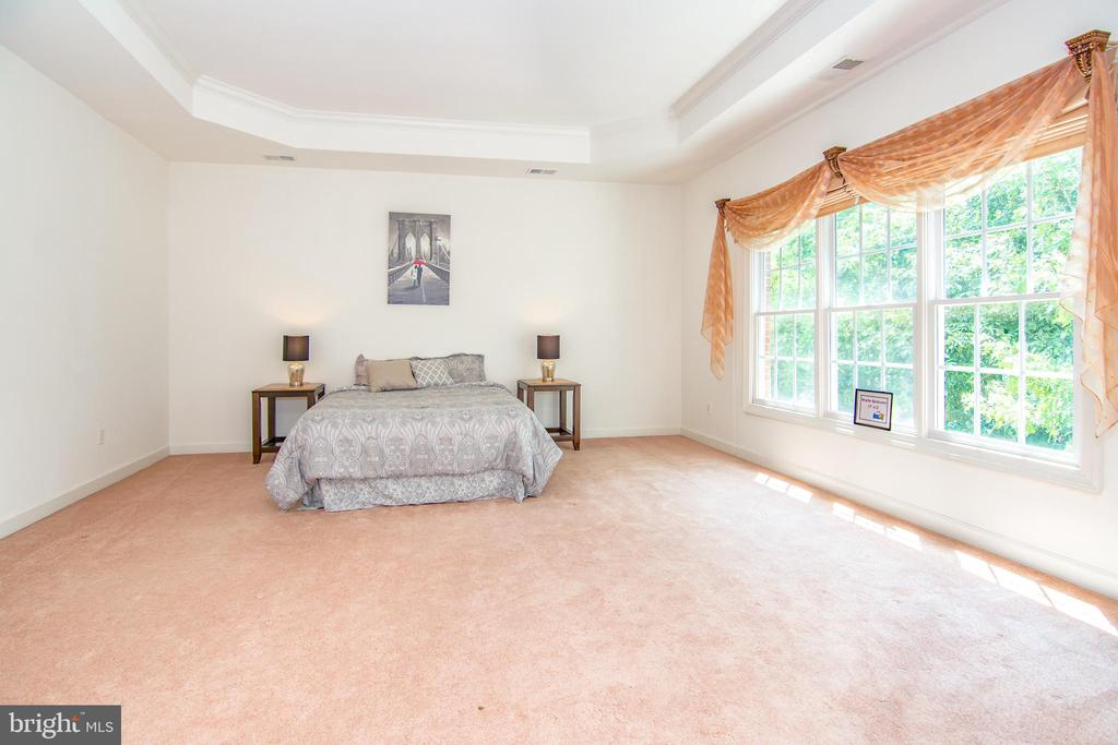 Large bedroom welcomes any size furniture easily - 2374 JAWED PL, VIENNA