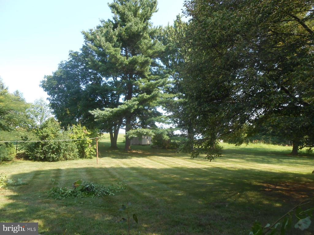 mature trees provided lots of backyard shade - 11228 ANGLEBERGER RD, THURMONT
